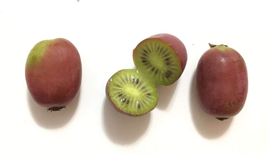 Beneficios para la salud del mini kiwi