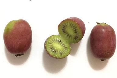 ¿Cómo se come el mini kiwi / kiwiño?