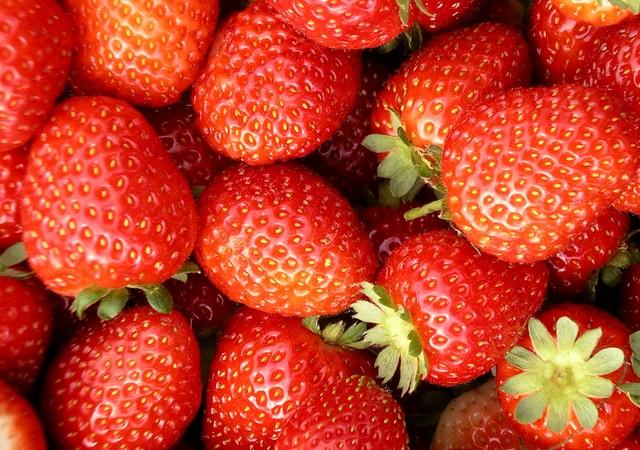 Tienda online de venta de fresas