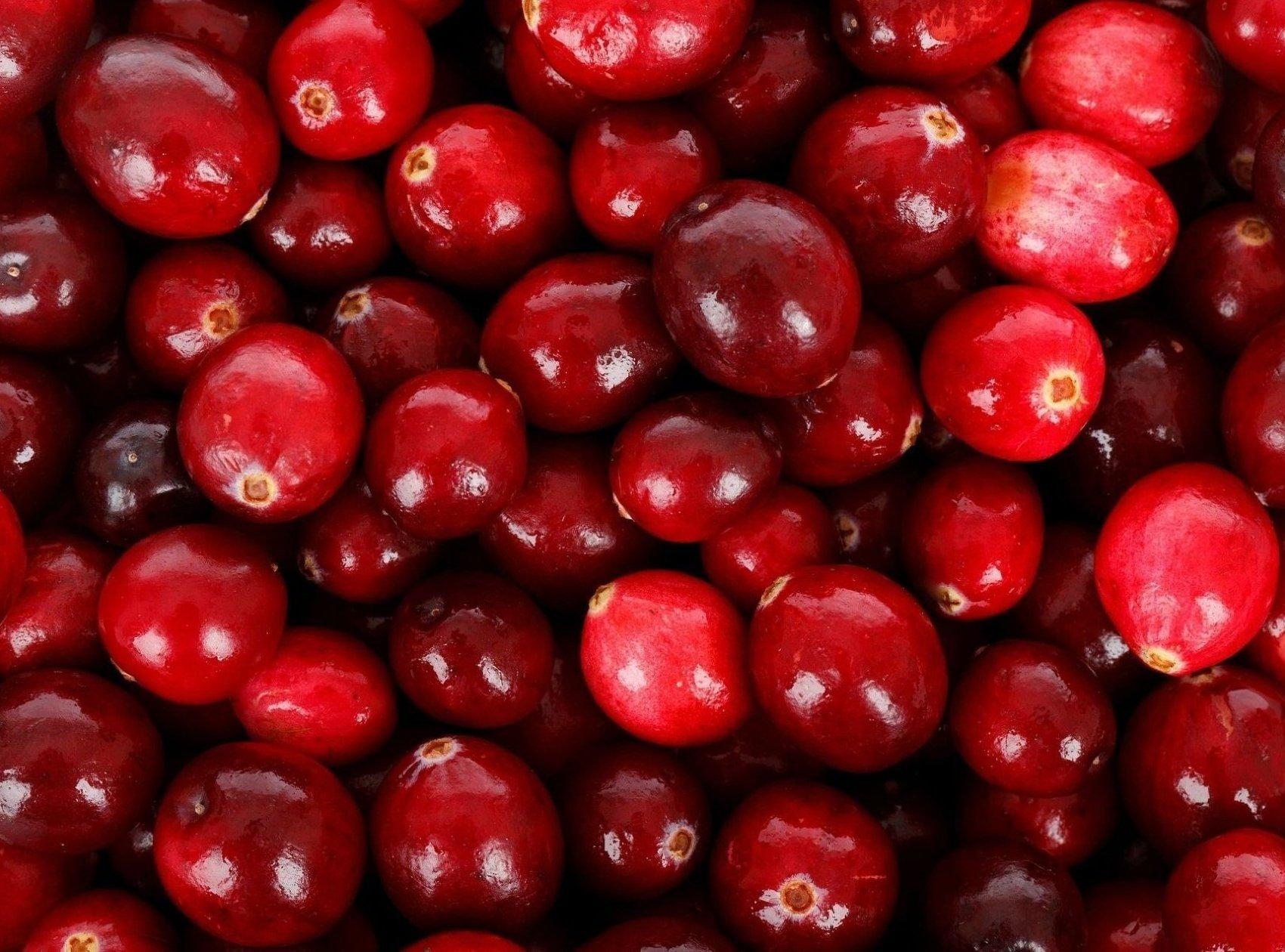 Venta online de plantas de arándano rojo