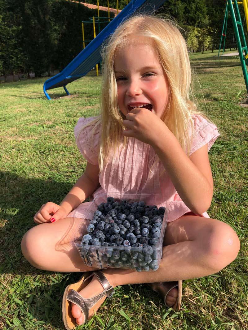 Beneficios de los arándanos en niños