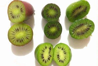Venta online de plantas de mini kiwi weiki macho